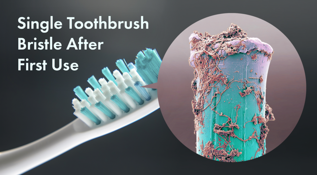 How the toothbrush looks after brushing teeth
